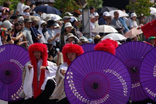 2008 鎌ヶ谷 よさこい 紫傘
