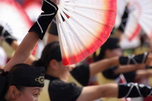 2008 鎌ヶ谷 よさこい 扇子