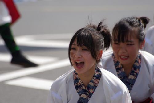 2008 鎌ヶ谷 よさこい 人3