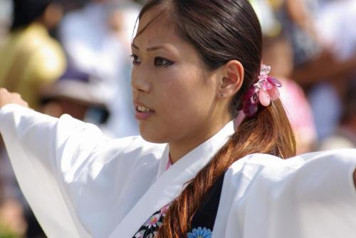 2008 鎌ヶ谷 よさこい 人4