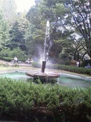 公園内の噴水