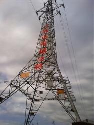 控えめサイズな鉄塔