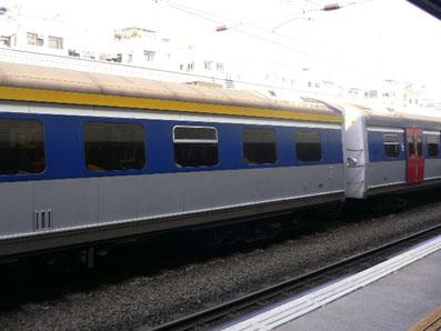 P1210011s.jpg