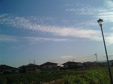 PAP_0039kasuya.jpg