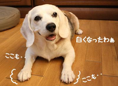10_20080905151943.jpg