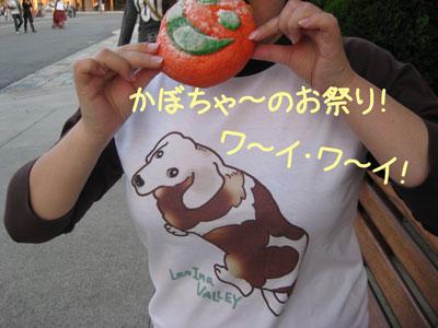 10_20081002214046.jpg