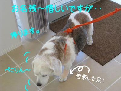 10_20081010215121.jpg
