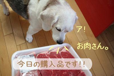 11_20080923182513.jpg