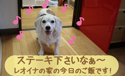 12_20080923183602.jpg