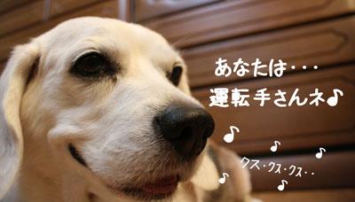 14_20080905151419.jpg