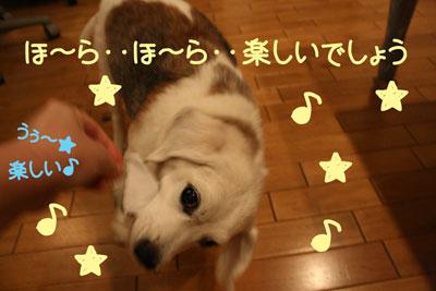 14_20081007170000.jpg
