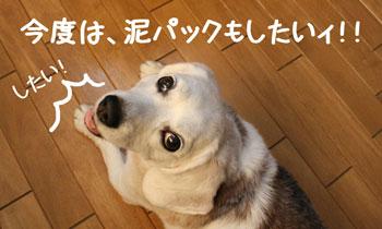 15_20080905151443.jpg