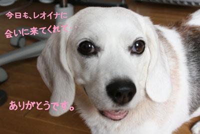 1_20080908130410.jpg