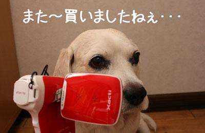 1_20080918211037.jpg