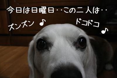 1_20080921153227.jpg