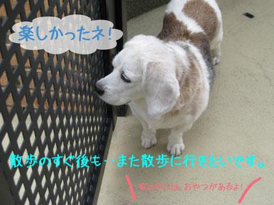 1_20080929130634.jpg