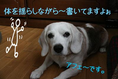 3_20080921153243.jpg