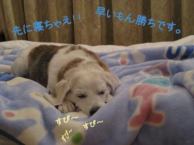 3_20081002011424.jpg