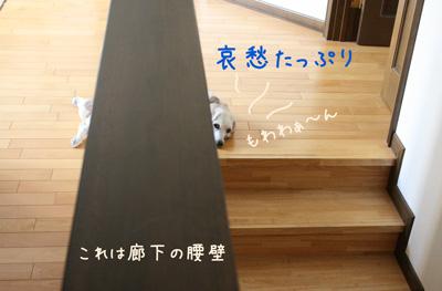 3_20081007010007.jpg