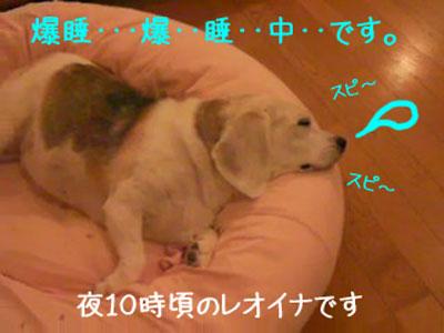 4_20080921173039.jpg