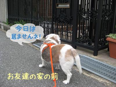 4_20080928153431.jpg
