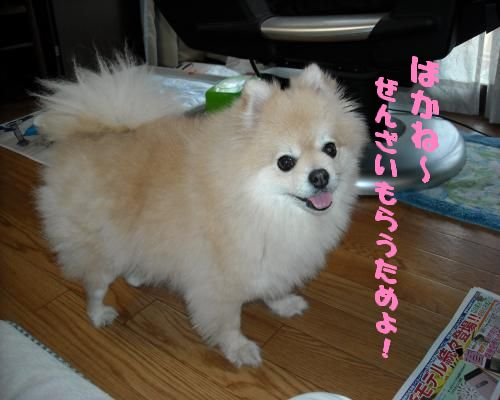 0108yuki2.jpg