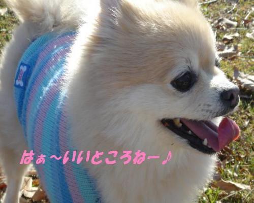 0112yuki2.jpg