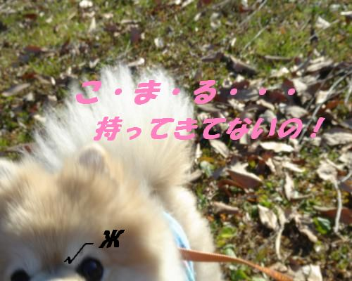0112yuki4.jpg