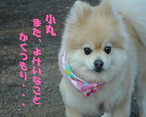 0114yuki1.jpg