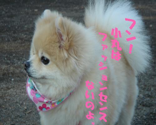 0114yuki3.jpg