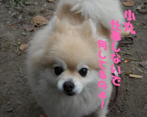 0116yuki1.jpg
