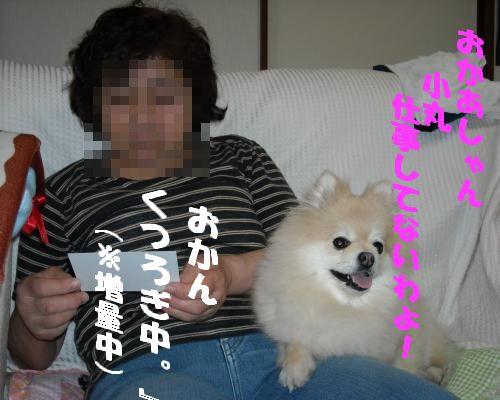 0116yuki2.jpg