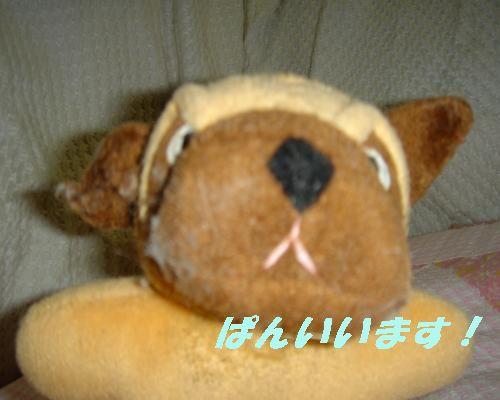 1230yuki.jpg