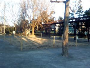 1月27日の中庭