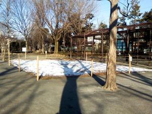 2月3日の中庭