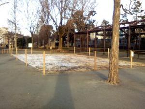 2月4日の中庭