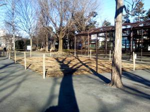2月5日の中庭