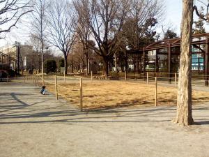 2月14日の中庭