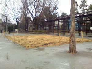2月15日の中庭