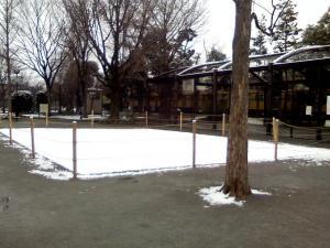 2月18日の中庭