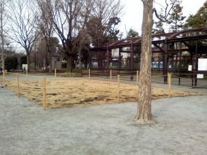 2月19日の中庭