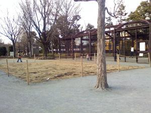 2月21日の中庭