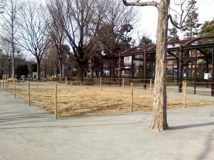 2月25日の中庭
