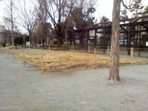 2月27日の中庭