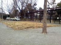 3月2日の中庭