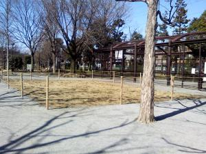 3月11日の中庭