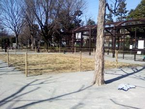 3月14日の中庭