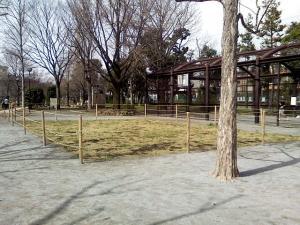 3月21日の中庭