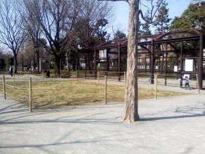 3月22日の中庭