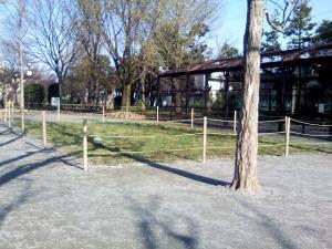 4月8日の中庭